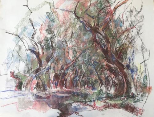 Treurende bomen (70×50)cm pastel