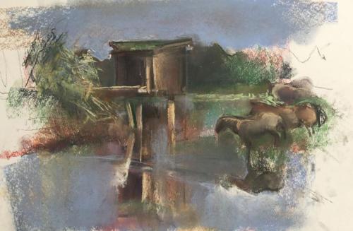 Bij Tiel aan de Waal  (45x28,5)cm pastel