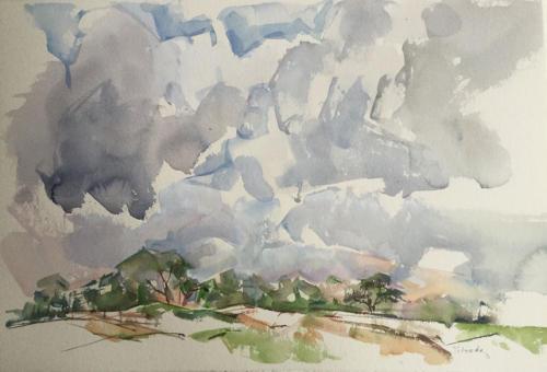 Allardsoog  (57x38)cm  aquarel